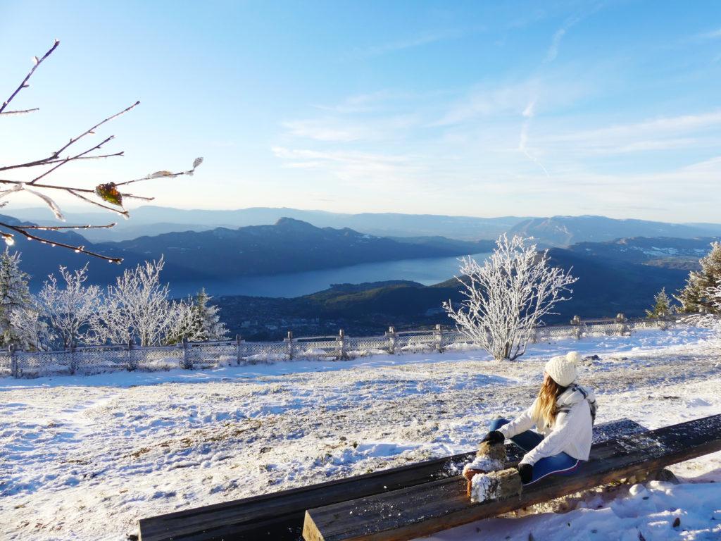 Panorama depuis le Revard - J. Hahn